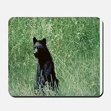 Teenage bear  Mousepad
