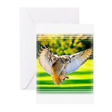 Funny Barn owl Greeting Cards (Pk of 20)