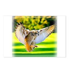 Funny Hawk Postcards (Package of 8)