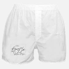 SpecGram Phonology/Phonetics Boxer Shorts