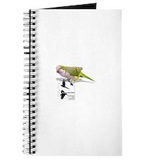 Quakers of Arizona Bird Clinic Journal