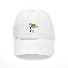 Quakers of Arizona Bird Clinic Baseball Cap