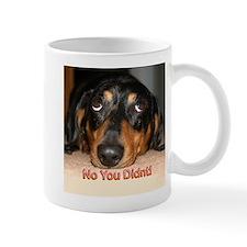 No You Didn't Mug
