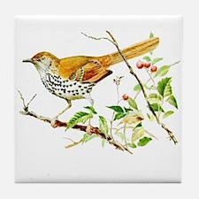 Brown Thrasher Tile Coaster