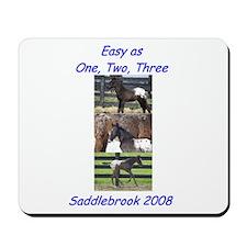 BuddyBash 2008 Mousepad