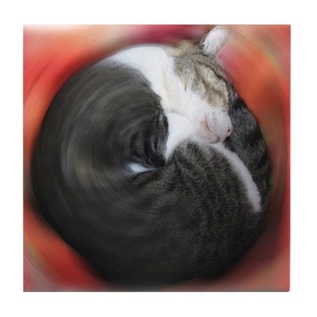 Curled Cat Art Tile Coaster