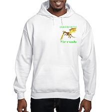 Dragon Castle Hoodie
