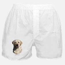 Labrador Retriever 9Y383D-267 Boxer Shorts