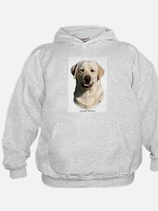 Labrador Retriever 9Y383D-267 Hoodie