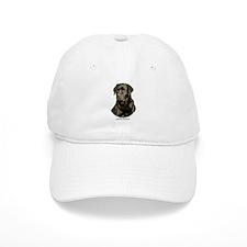 Labrador Retriever 9Y245D-018 Baseball Cap
