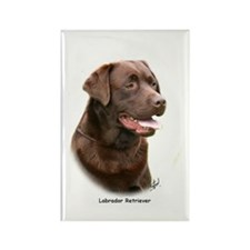 Labrador Retriever 9Y243D-004a Rectangle Magnet