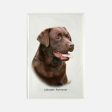 Labrador Retriever 9Y243D-004a Rectangle Magnet