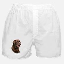 Labrador Retriever 9Y243D-004a Boxer Shorts