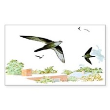 Chimney Swift Rectangle Decal