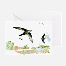 Chimney Swift Greeting Card