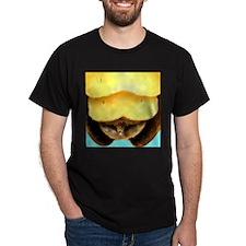 Male Firefly Lantern T-Shirt