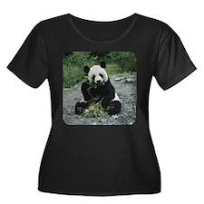 Panda T