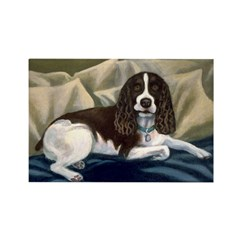 SPRINGER SPANIEL Rectangle Magnet (100 pack)