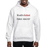 World's Hottest Public Analyst Hooded Sweatshirt