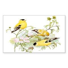 American Goldfinch Rectangle Decal