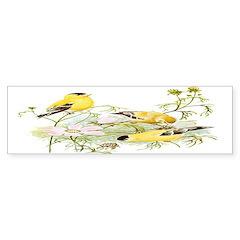 American Goldfinch Bumper Sticker (50 pk)