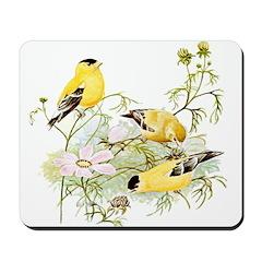 American Goldfinch Mousepad