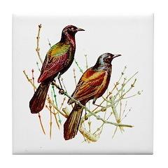 Grackle Bird Tile Coaster