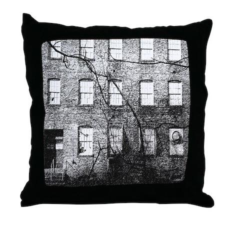 Secret Windows Throw Pillow