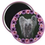 New Chinese Crested Design Magnet
