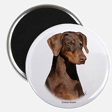 """Dobermann 9Y381D-162 2.25"""" Magnet (100 pack)"""