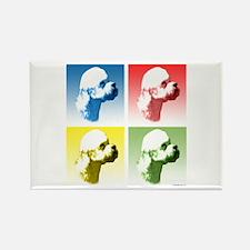 Dandie Dinmont Pop Art Rectangle Magnet (100 pack)