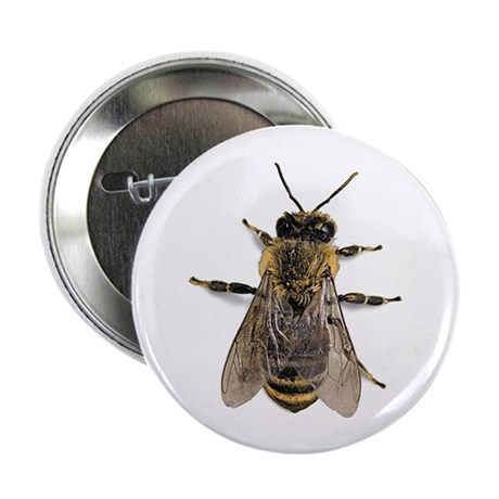 "Big Honey Bee 2.25"" Button (100 pack)"