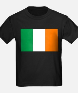 Irish flag of Ireland T