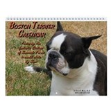 Boston terriers Calendars