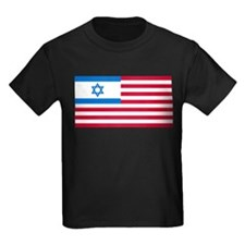 Israeli-American Flag T