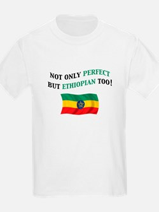 Perfect Ethiopian Gifts T-Shirt