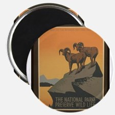 The National Parks Preserve W Magnet