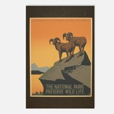 The National Parks Preserve W Postcards (Package o