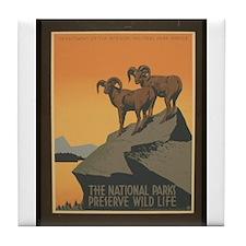 The National Parks Preserve W Tile Coaster