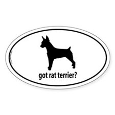 Got Rat Terrier? Oval Decal