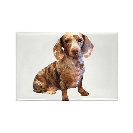 Spotty Dachshund Dog Rectangle Magnet