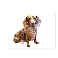 Spotty Dachshund Dog Postcards (Package of 8)