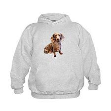 Spotty Dachshund Dog Hoodie
