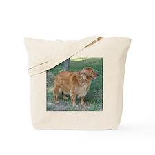 Funny Athena Tote Bag