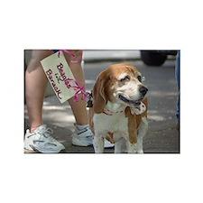 Beagles for Barack Rectangle Magnet