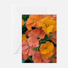 Orange Flowers Greeting Cards (Pk of 10)