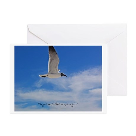 Serenity Seagull Greeting Cards (Pk of 10)