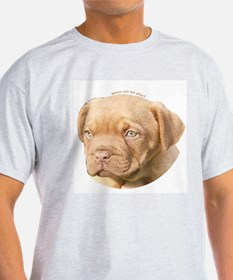 Dogue De Bordeaux Puppy Ash Grey T-Shirt