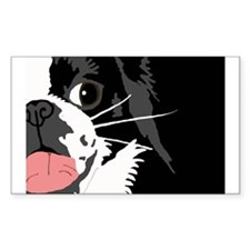 Lucky Chin Benefit Rectangle Decal