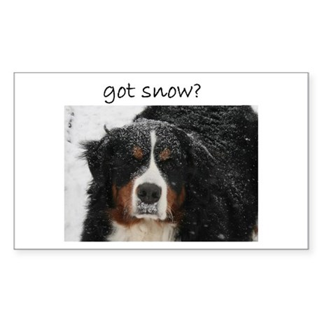 Got Snow? Rectangle Sticker